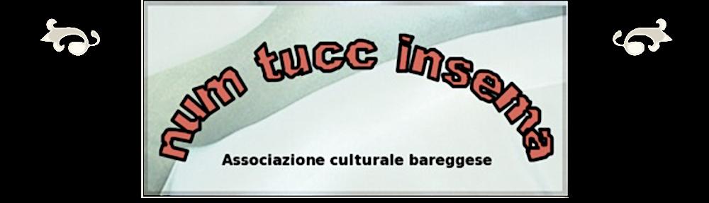 Num Tucc Insema